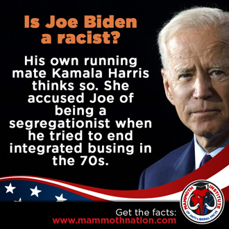 Is Joe Biden Racist?