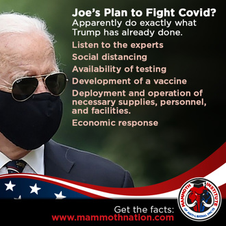 Biden with no real plan to fight covid