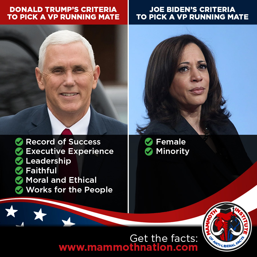 Pence versus Harris Qualifications